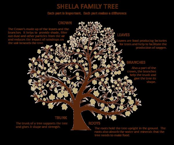 shella tree